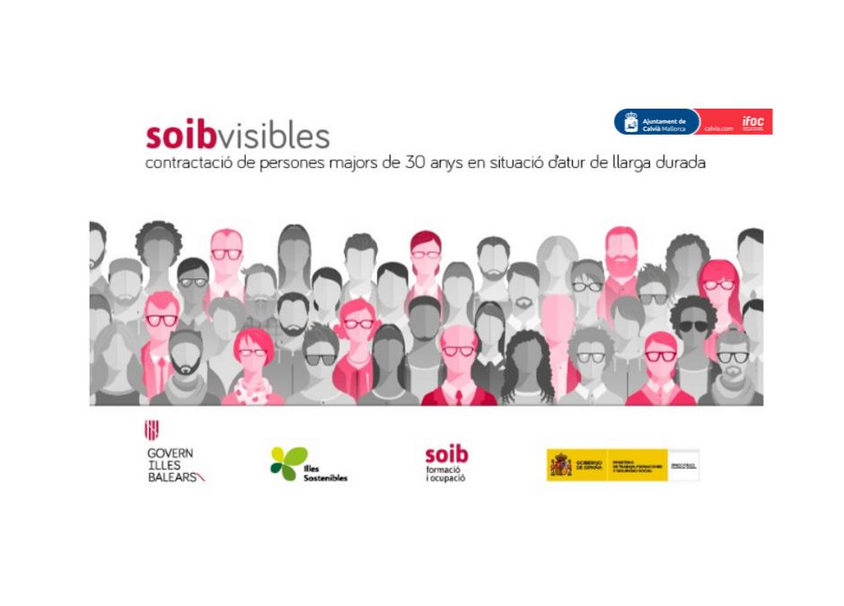 SOIB Visibles 2019